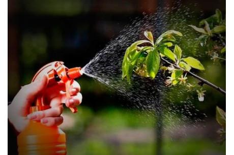Как вырастить здоровые растения и защитить их от вредителей?