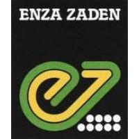 Enza Zaden (Нидерланды)