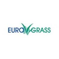 Euro Grass