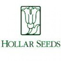 Hollar Seeds
