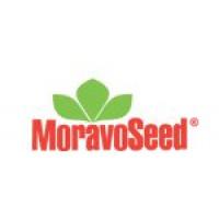 Moravo Seed
