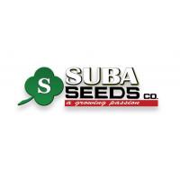 Suba seeds