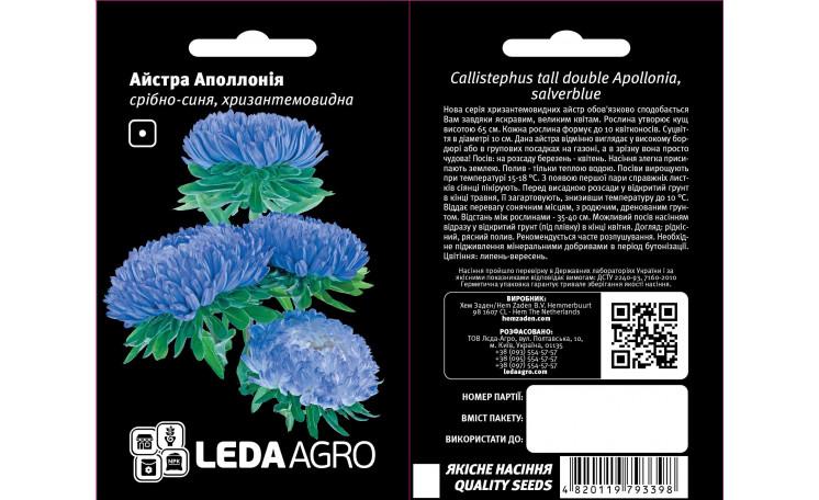 Астра хризантемовидная Аполлония серебряно-синяя Leda Agro