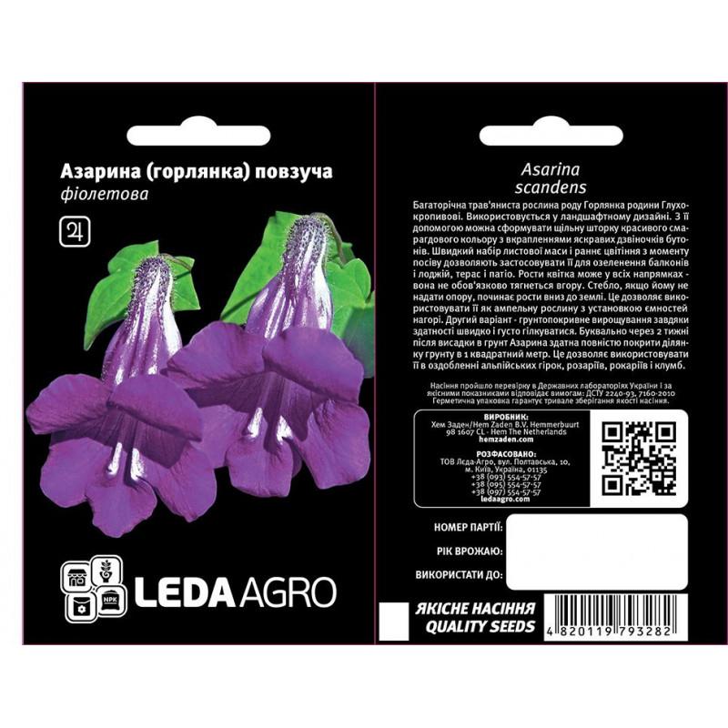 Азарина ползучая фиолетовая Azarina polzychaya fioletovaya