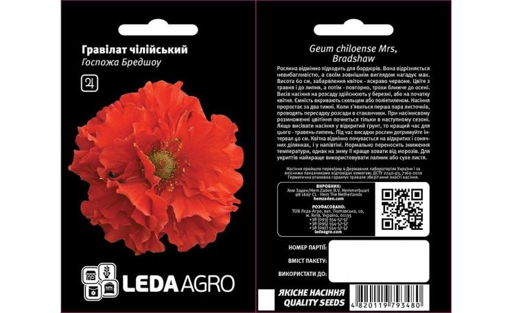 Гравилат чилийский Госпожа Бредшоу Leda Agro