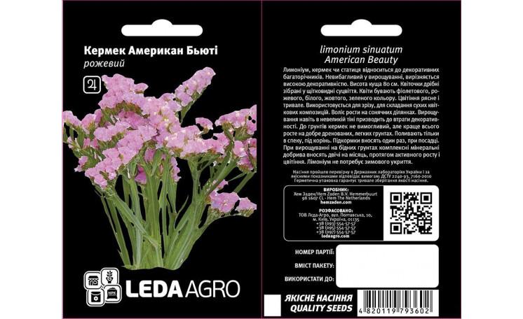 Кермек Американ Бьюти розовый Leda Agro