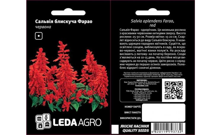 Сальвия блестящая Фарао красная Leda Agro