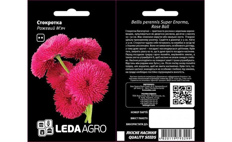 Стокротка Розовый мяч Leda Agro