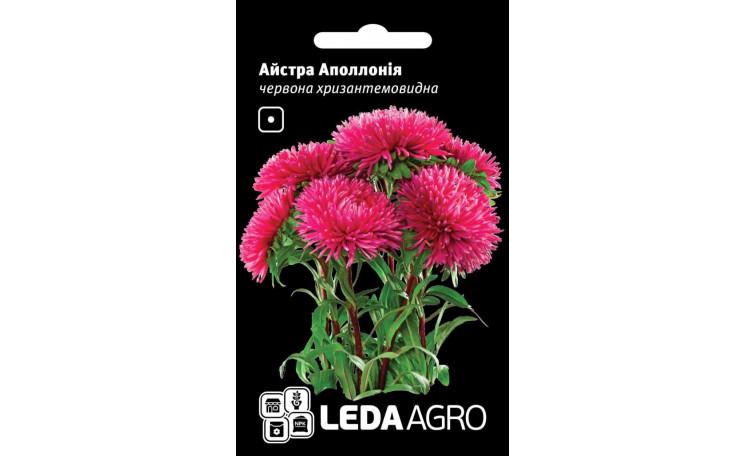 Астра хризантемовидная Аполлония красная Leda Agro