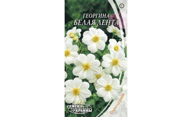 Георгина Белая лента Семена Украины