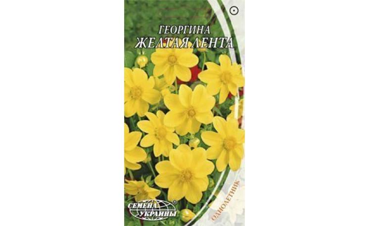 Георгина крупноцветная Желтая лента Семена Украины