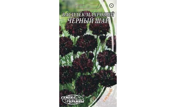 Василёк махровый Черный шар Семена Украины