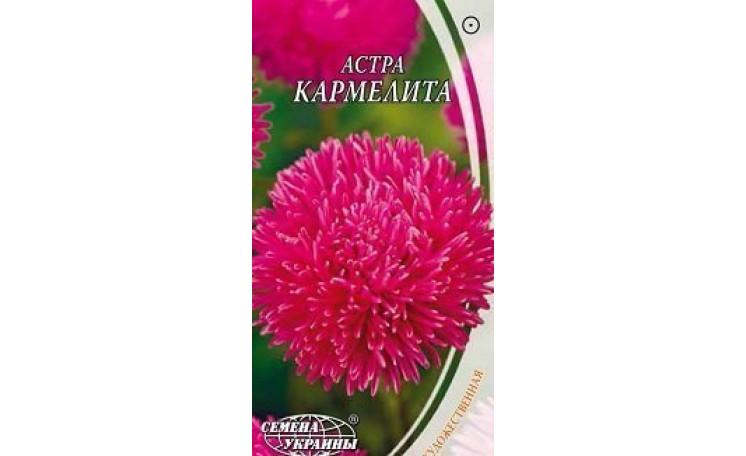 Астра художественная Кармелита Семена Украины