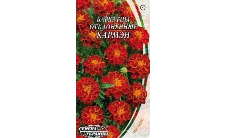 Бархатцы отклонённые Кармэн Семена Украины