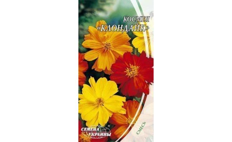 Космея махровая Клондайк Семена Украины