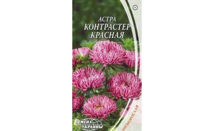 Астра низкорослая Контрастер красная Семена Украины