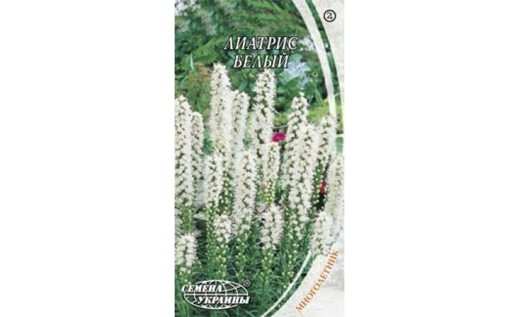 Лиатрис белый Семена Украины