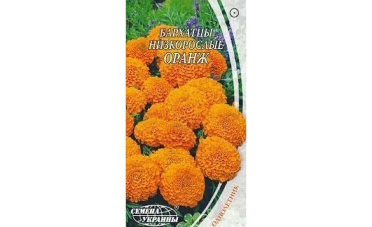 Бархатцы прямостоячие низкорослые Оранж Семена Украины
