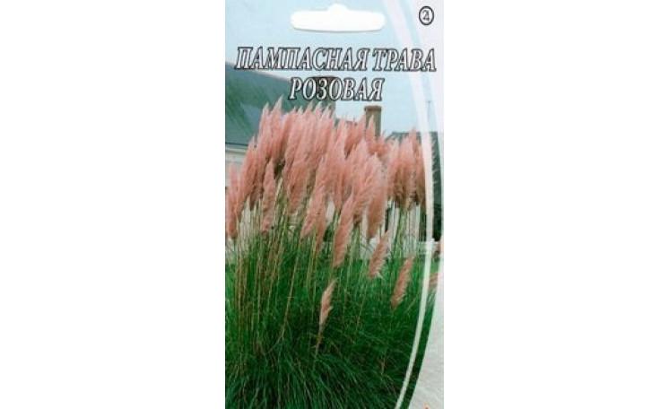 Пампасная трава розовая Семена Украины