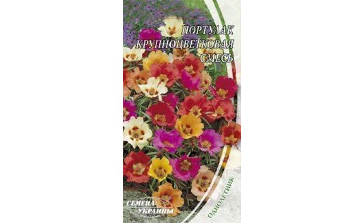 Портулак крупноцветковый смесь Семена Украины