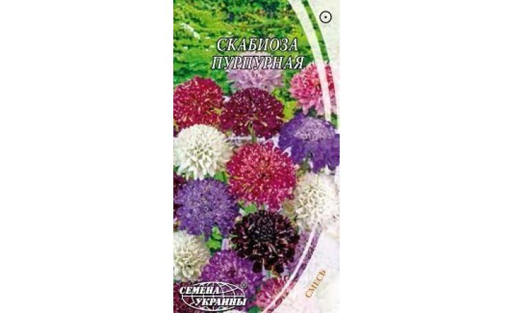 Скабиоза пурпурная смесь Семена Украины