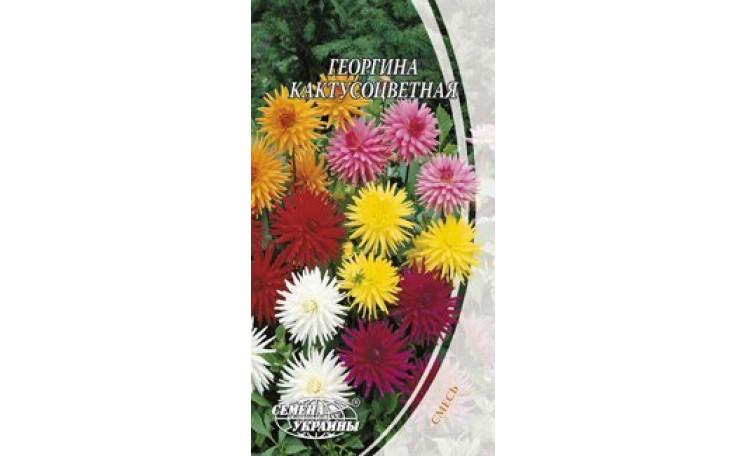 Георгина кактусоцветная смесь Семена Украины
