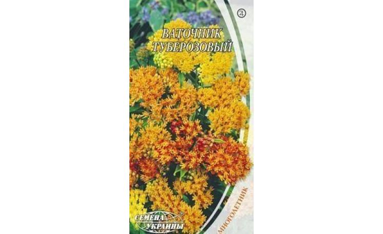 Ваточник туберозовый Семена Украины