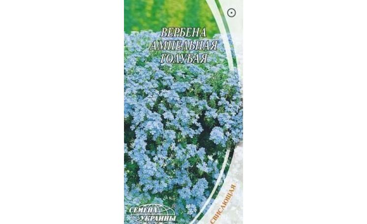 Вербена ампельная голубая Семена Украины
