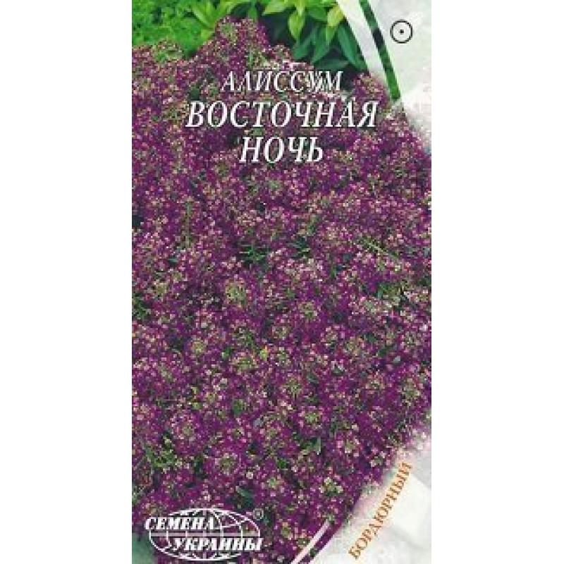 Алиссум Восточная ночь Vostocnaya noch