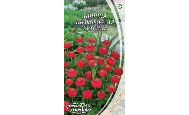 Цинния низкорослая красная Семена Украины
