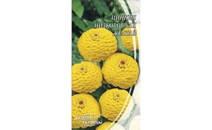 Цинния низкорослая желтая Семена Украины