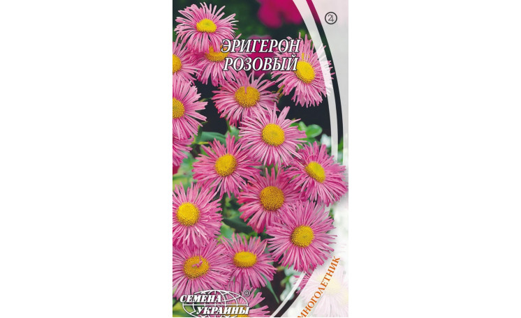Эригерон розовый Семена Украины
