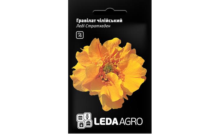 Гравилат чилийский Леди Страхден Leda Agro