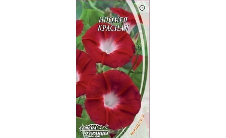 Ипомея пурпурная красная Семена Украины
