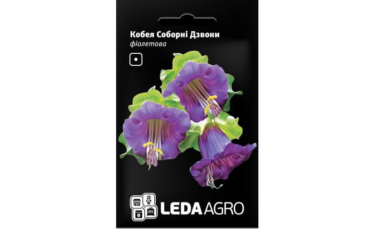Кобея Соборные Колокола фиолетовая Leda Agro