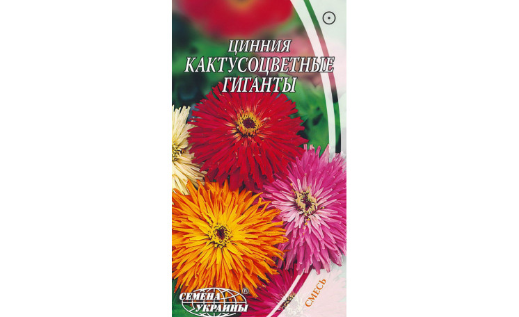 Цинния Кактусоцветная гигант Семена Украины