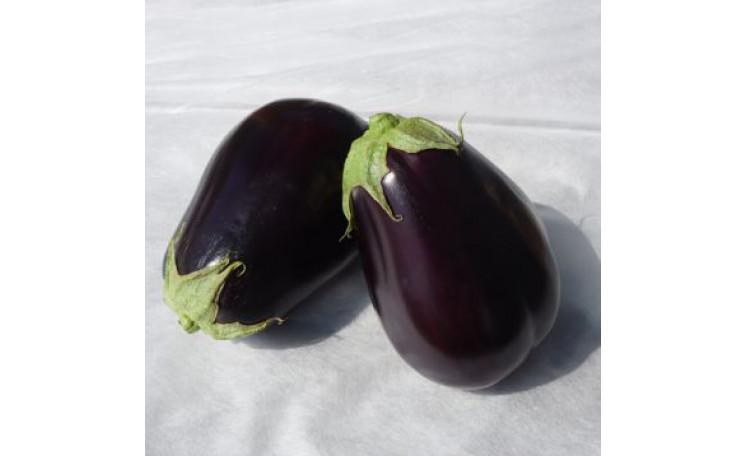 "Баклажан ""Сара (CRX 50129) F1"" (Cora Seeds)"