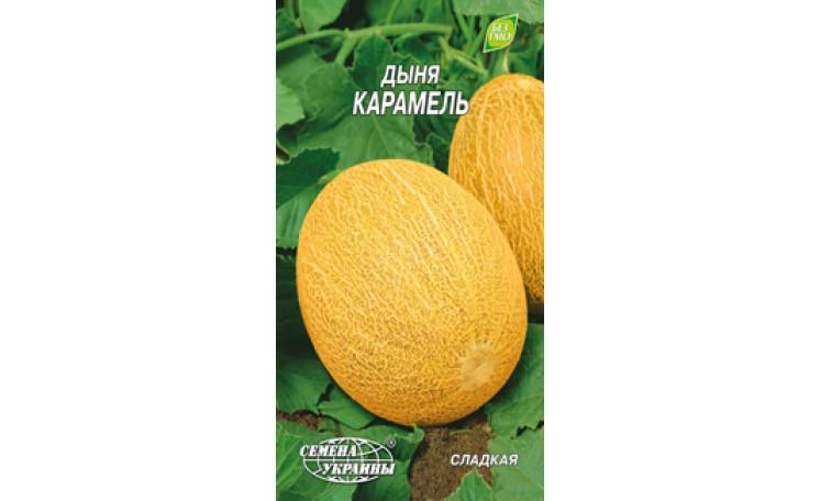 Дыня Карамель Семена Украины
