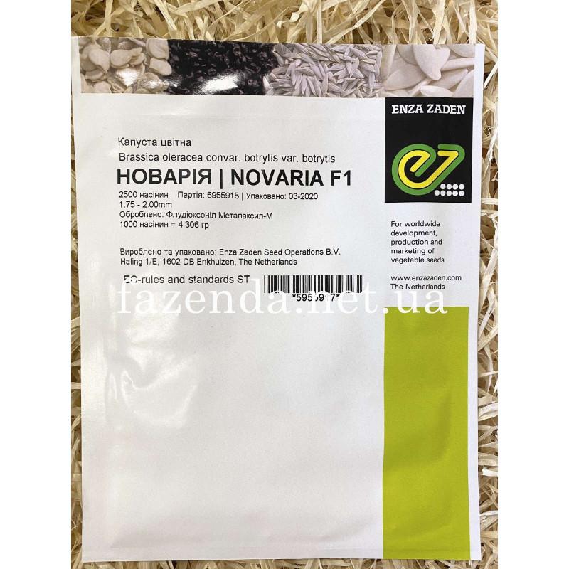 Новария F1 Novaria F1 Капуста цветная Enza Zaden (Голландия)