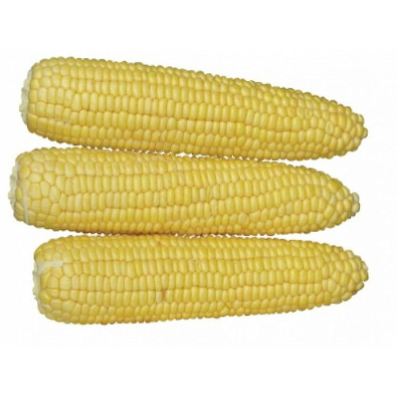 Кукуруза Хаммер F1 (Lark Seeds)