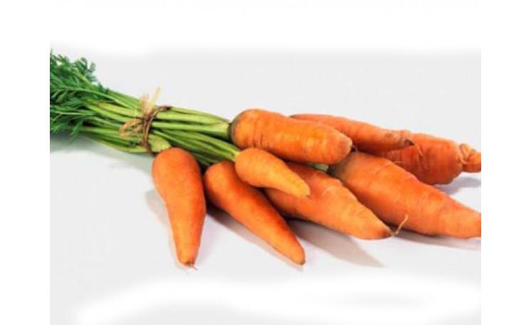 Морковь Анина