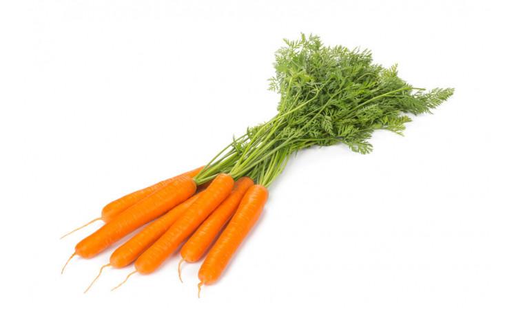 Морковь Эллис F1