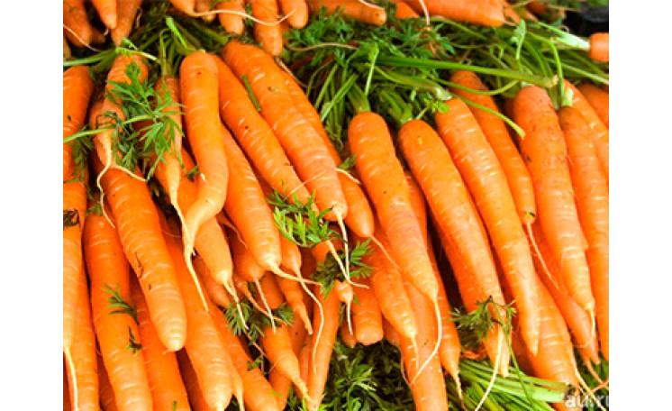Морковь Колосеум F1