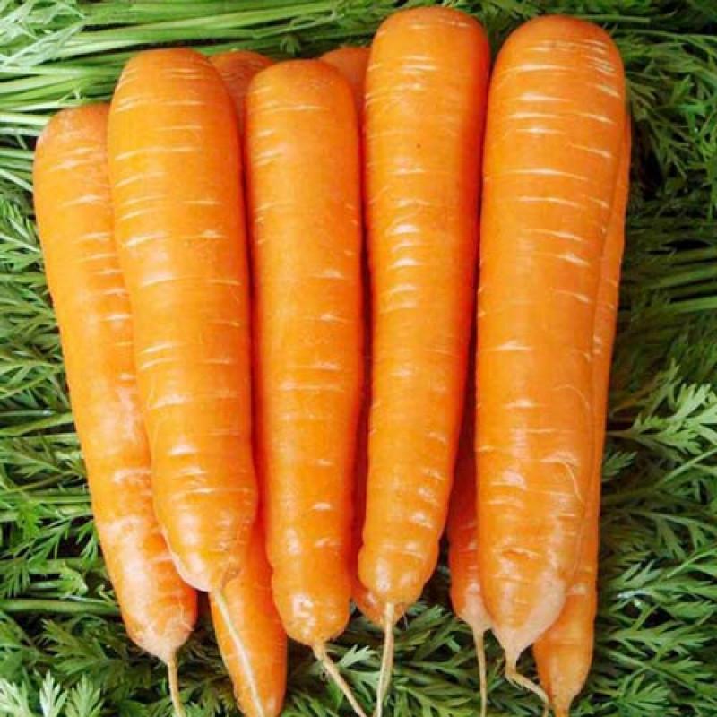 Морковь Виктория F1