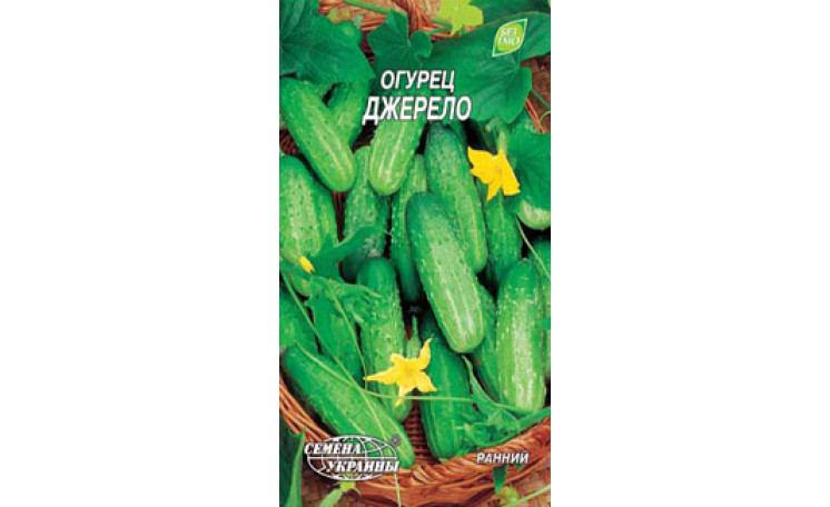 Огурец Джерело Семена Украины