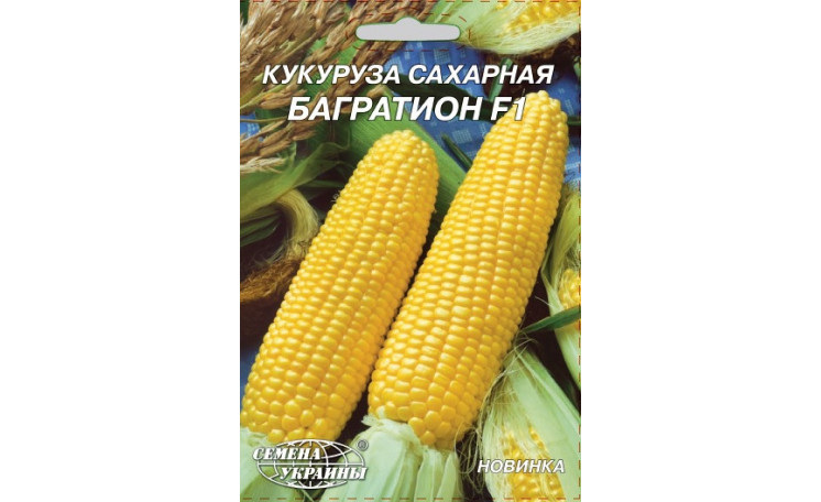 Кукуруза Багратион F1 Семена Украины