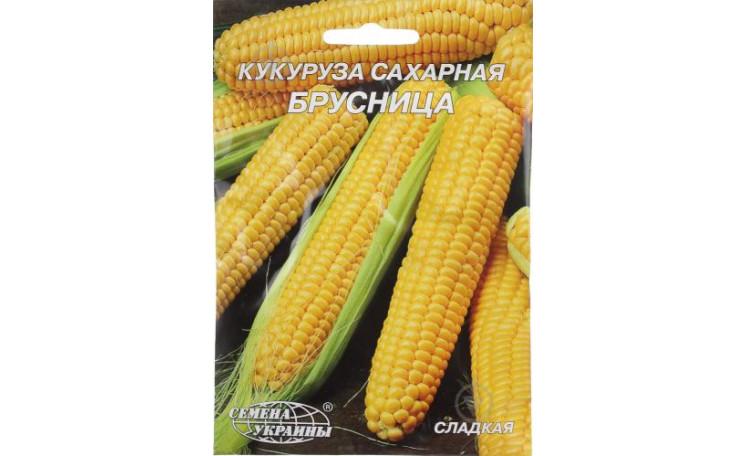 Кукуруза Брусница Семена Украины