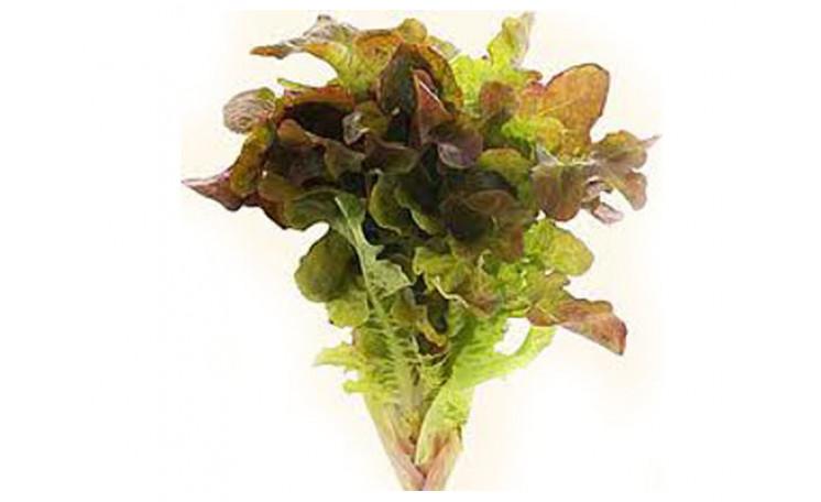 Американский коричневый American brown Салат