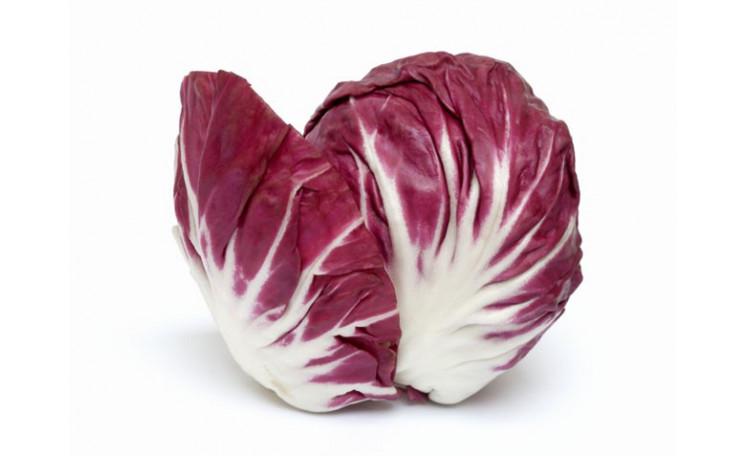 Цикорный салат Индиго (Bejo)