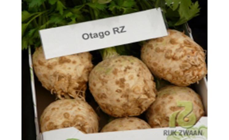 Отаго Otago RZ Сельдерей